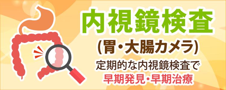 内視鏡内科(胃カメラ・大腸カメラ)